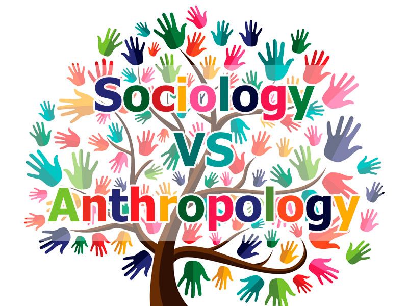 Sociology Is Different from Anthropology